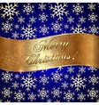 Blue Background with Snowflakes and Greeting vector image vector image