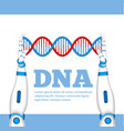 genetic engineering concept with robot hands vector image