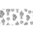 hand drawn cactuses and succulents pattern vector image
