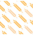 seamless pattern ears of wheat vector image vector image