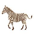 stylized of zebra vector image vector image