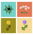 assembly flat flower paeonia vector image