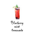 blueberry mint lemonade vector image vector image