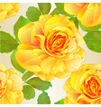 seamless texture rose yellow and leaves nature vector image vector image