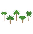 set of palm in various type vector image vector image