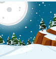 snow night time scene vector image vector image