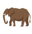 stylized of elephant vector image vector image