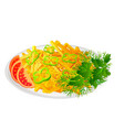 french fries with salad and tomatoes vector image
