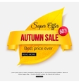 Autumn sale banner isolated on white background vector image vector image