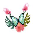 beautiful butterfly cartoon vector image