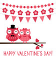 cute owl couple valentine card vector image vector image