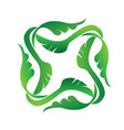 green plant leafs ecology icon vector image