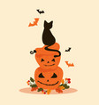 halloween objects - black cat sits on pumpkins vector image vector image