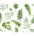 seamless greenery green leaves botanical rustic vector image