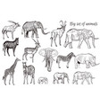 set hand drawn detailed african animal vector image
