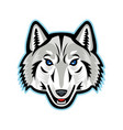 artic wolf head front mascot vector image vector image