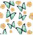 beautiful butterfly cartoon vector image