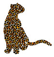 drawn jaguar leopard wild cat panther coloured vector image
