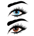 eyes with long eyelashes vector image vector image
