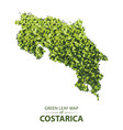 green leaf map costa rica vector image vector image