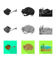 isolated object wildlife and bog logo set of vector image