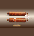 object smoked sausage salami in realism style vector image