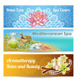 spa salon banner set vector image vector image