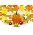 banner pumpkin on a background of yellow an vector image