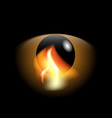 eye and flame vector image vector image