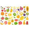 Fruits isolated cherry orange peach plum banana