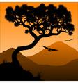 Mountain pine vector image vector image