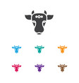 of faith symbol on indian cow vector image