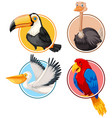 set of bird in circle vector image vector image