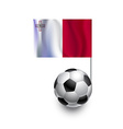 Soccer Balls or Footballs with flag of Malta vector image vector image