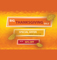 thanksgiving sale poster vector image