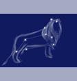 zodiac sign-leo vector image vector image