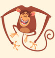294monkey vector image