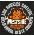 Basketball team emblem vector image