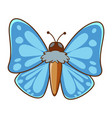 butterfly with blue wings on white background vector image