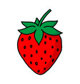garden strawberry fruit or strawberries modern vector image