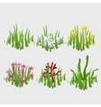 Icons of grass with different flowers and elements vector image vector image