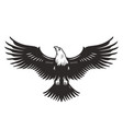 monochrome flying eagle template vector image vector image