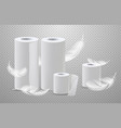 realistic toilete paper and paper towels vector image