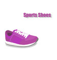 sport shoes on white background vector image vector image