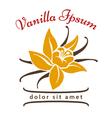 Vanilla dessert flavor logo Vanillas aromatic vector image vector image