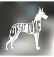 Creative design of grat dane breed inside dog vector image