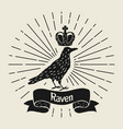 background with black raven hand drawn inky bird vector image vector image