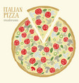 colorful of italian pizza with vector image
