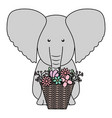 elephant with floral basket bohemian style vector image