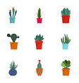 succulent cactus icon set flat style vector image vector image